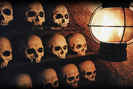 Amsterdam Catacombs